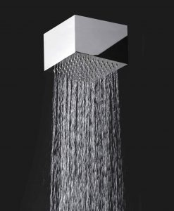 Tête de douche